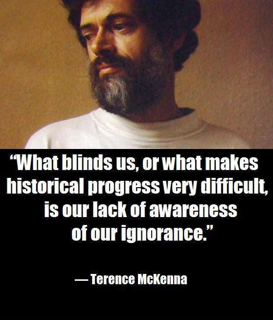 Essay/Term paper: The trip: journey to the center of terence mckenna's inner self.