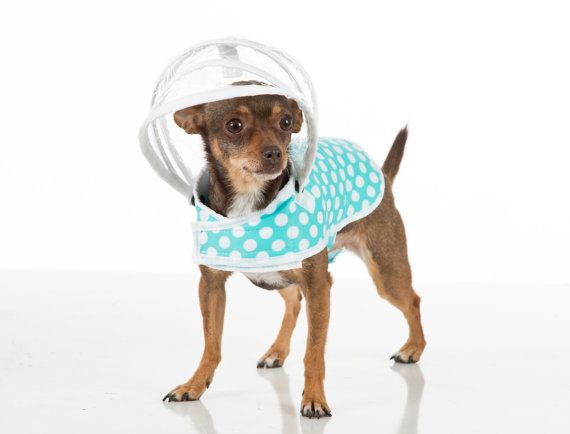 Love! Dog Raincoat  White Polka Dots on Mint  Puddle Jumper by PushPushi, $44.95