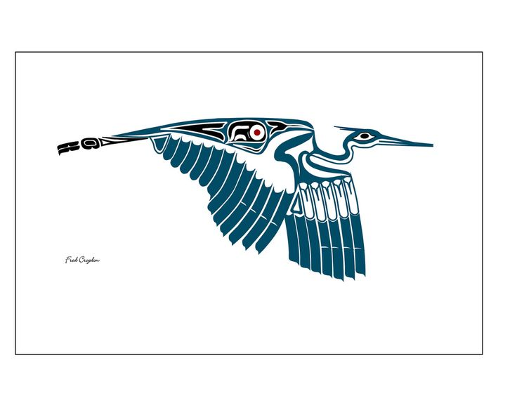 Great Blue Heron - Fred Croydon