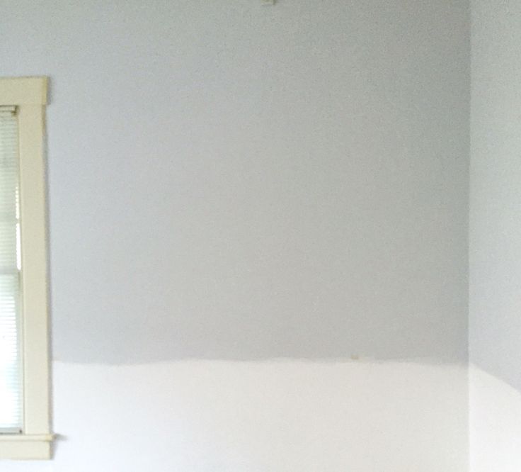 New office wall painted with Benjamin Moore's Marilyn's Dress and Chantilly Lace  Paint color dreams...