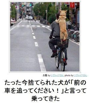 「ボケて」殿堂入りボケ傑作選 - NAVER まとめ  Found on matome.nave