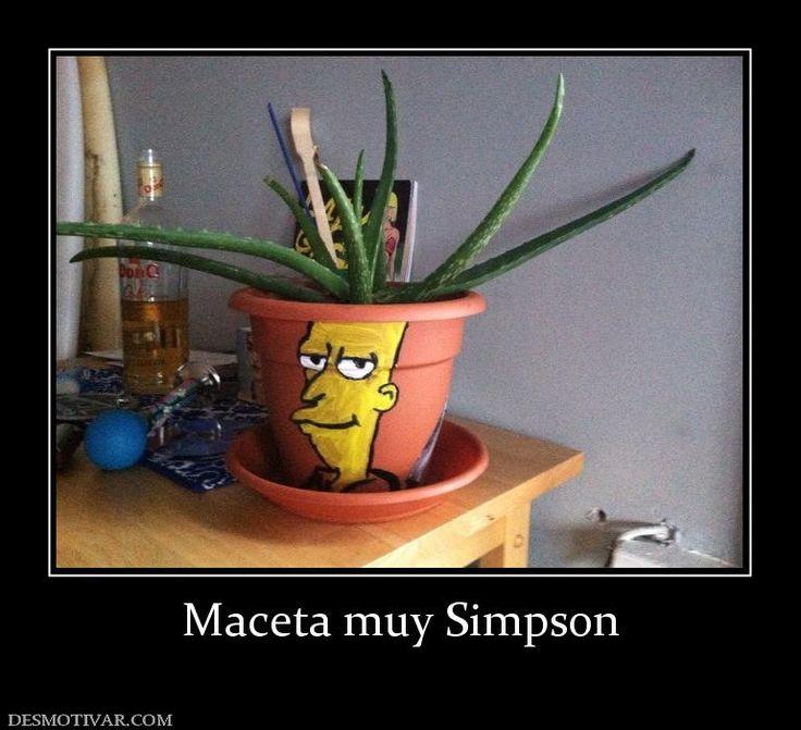 Maceta muy Simpson