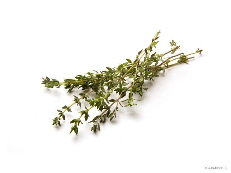 tijm: Antiseptisch, schimmelwerend, slijmoplossend, krampwerend, bronchiën verwijdend.  Werkt goed bij verkoudheid en hoest.