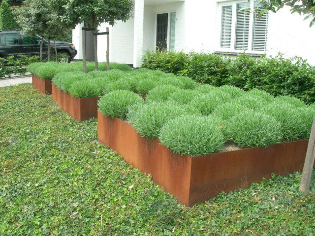CorTen Steel planting containers