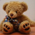 800px-teddy_bear_90_flash