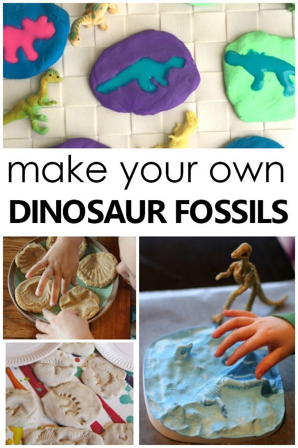 Sheppard Software's Dinosaurs: fossils activities and games