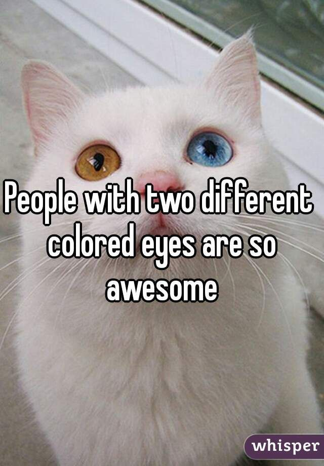 """""""People with two different colored eyes are so awesome"""""""