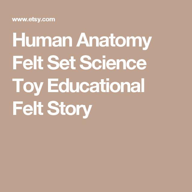 Human Anatomy Felt Set  Science Toy  Educational Felt Story