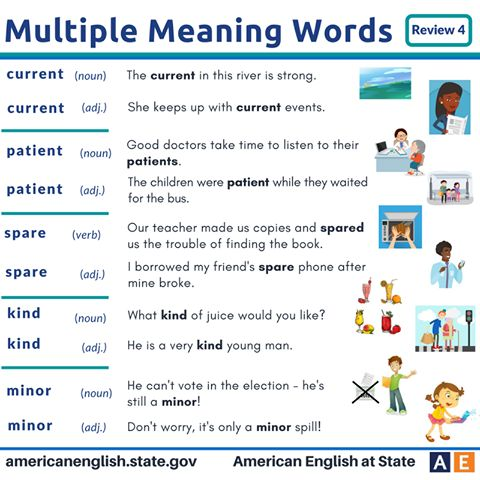 Multiple Meaning Words: Review 4
