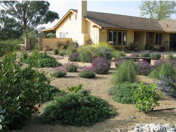desertscape gardening pinterest landscaping ideas and landscapes. Black Bedroom Furniture Sets. Home Design Ideas