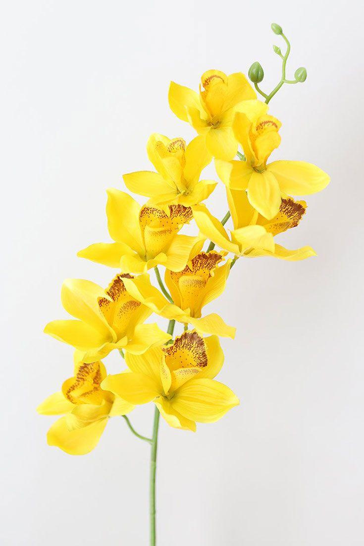 Silk Cymbidium Orchid In Golden Yellow 30 Tall In 2020 Cymbidium Orchids Orchid Flower Yellow Orchid