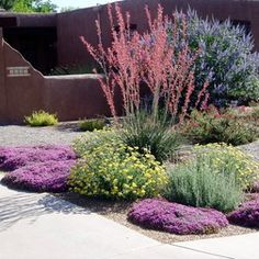 Elegant Drought Resistant Landscaping Designs
