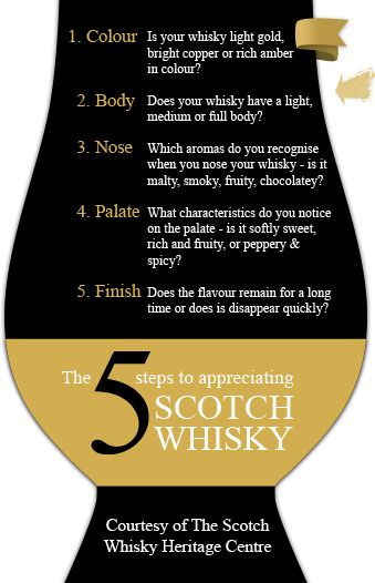 THE OFFICIAL Whisky Glass - The only way to drink Whisky/Whiskey!