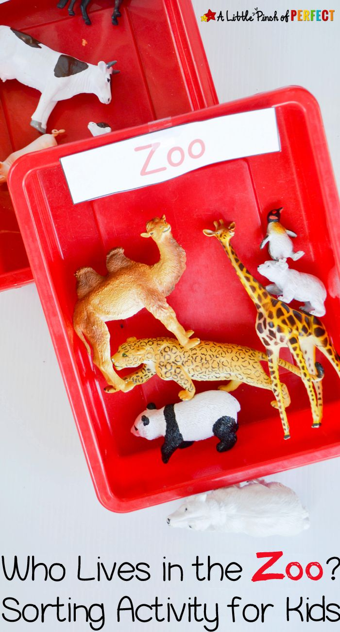 Who Lives in the Zoo Sorting Tray for Kids (animals, preschool, tot school)