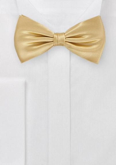 The perfect vintage gold bow tie. And it has a matching pocket square!
