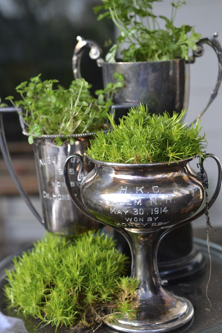 INSPIRATION: vintage trophies with moss
