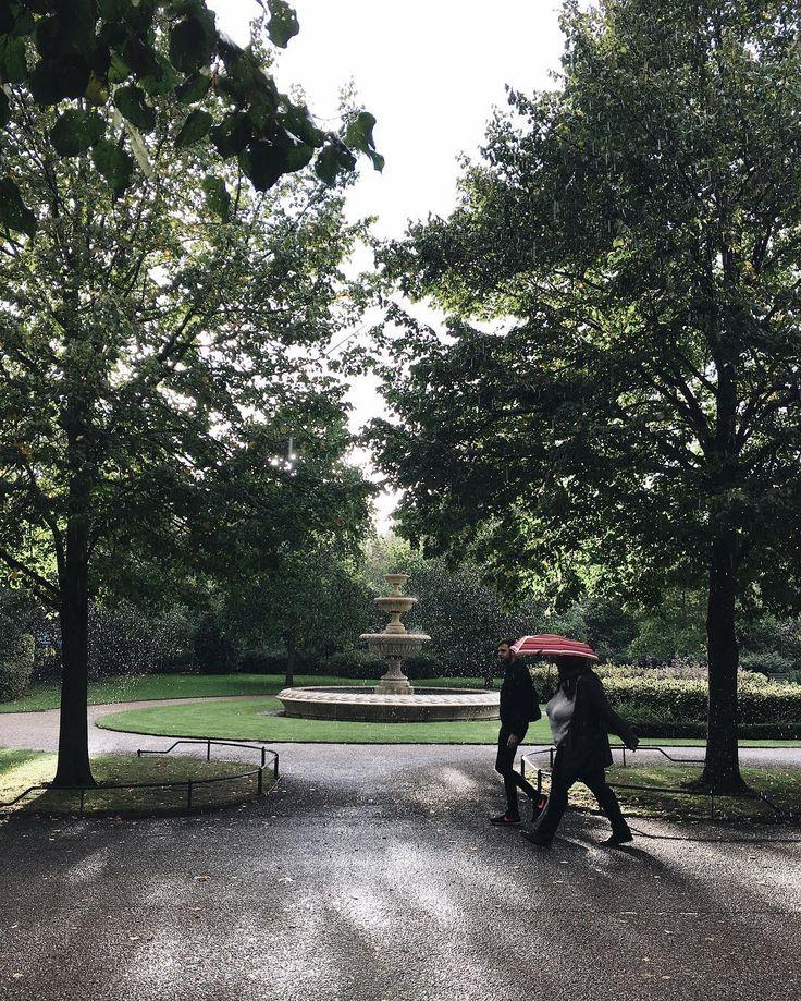 Had a lovely walk today with @catching_the_sunrise🚶🏻♀️Какое-то чудо сегодня творилось с природой, и дождь, и солнце, и опавшие листья! Видите этот проливной дождь в лучах солнца? Чудесно же, правда ❤️