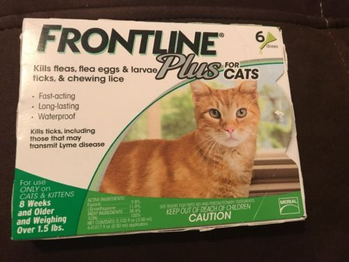 Flea and Tick Remedies 20749: New Frontline Plus For Cats 6 Doses -> BUY IT NOW ONLY: $54.99 on eBay!