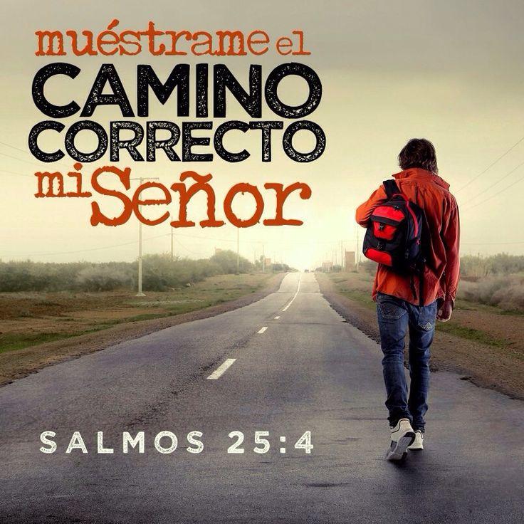 Muéstrame el camino correcto mi Señor