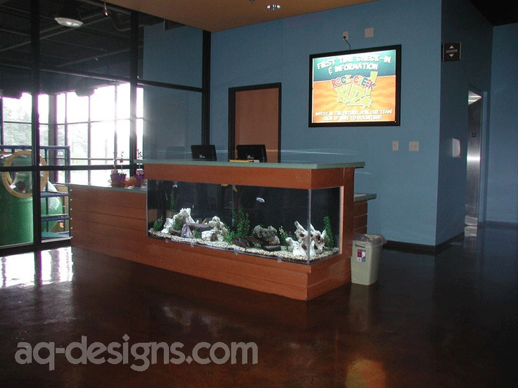 25 best ideas about 100 gallon aquarium on pinterest 1 for 100 gallon fish tanks