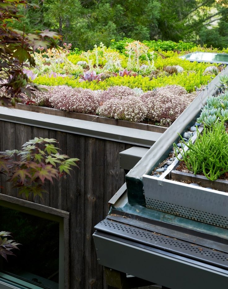 Soon, I will have a house even more like a Hobbit hole. Sedum Roof Drainage System from Mill Valley Cabins