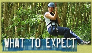Big Island Eco Adventures, the Best Zipline Tour in Hawaii