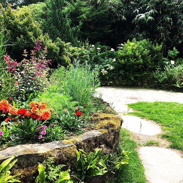 Traumhafte Gartengestaltung Im Botanischengarten In Munster Garten Pflanzen Gartentechnik Plants Interior Furniture Sidewalk
