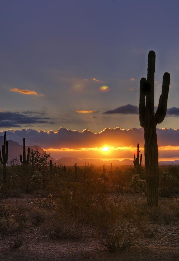 A Spectacular Arizona Sunrise; photo by Saija Lehtonen