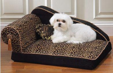 лежанка для собак - Самое интересное в блогах