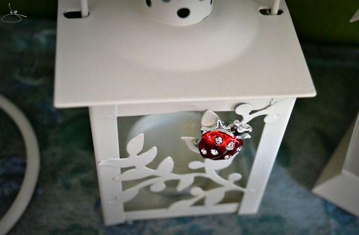 Lanterna con coccinella. #casa #oggetti #regali #fortuna #coccinella