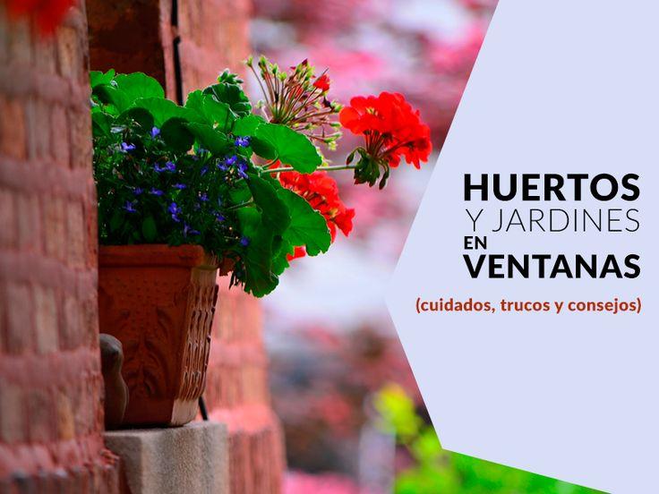 70 best huerto en el balc n images on pinterest potager - Huerto urbano balcon ...