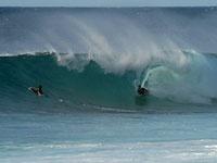 http://hawaiiwp.com/minsoo1/wp-content/themes/responz/uploads/Pixmac000077290709.jpg: Hawai I Community