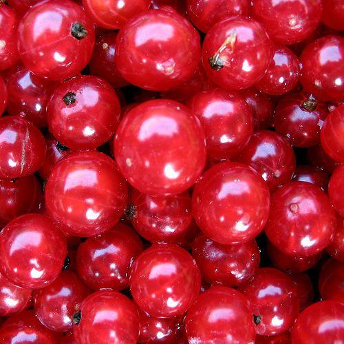 El arándano rojo nos aporta carotenoides y antocianos, unos componentes muy valorados por sus propiedades para combatir los radicales libres, que son los causantes del envejecimiento de nuestra piel y nuestro organismo.