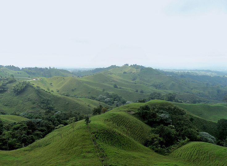 Mirador de Filandia__ Departamento del Quindío,Colombia
