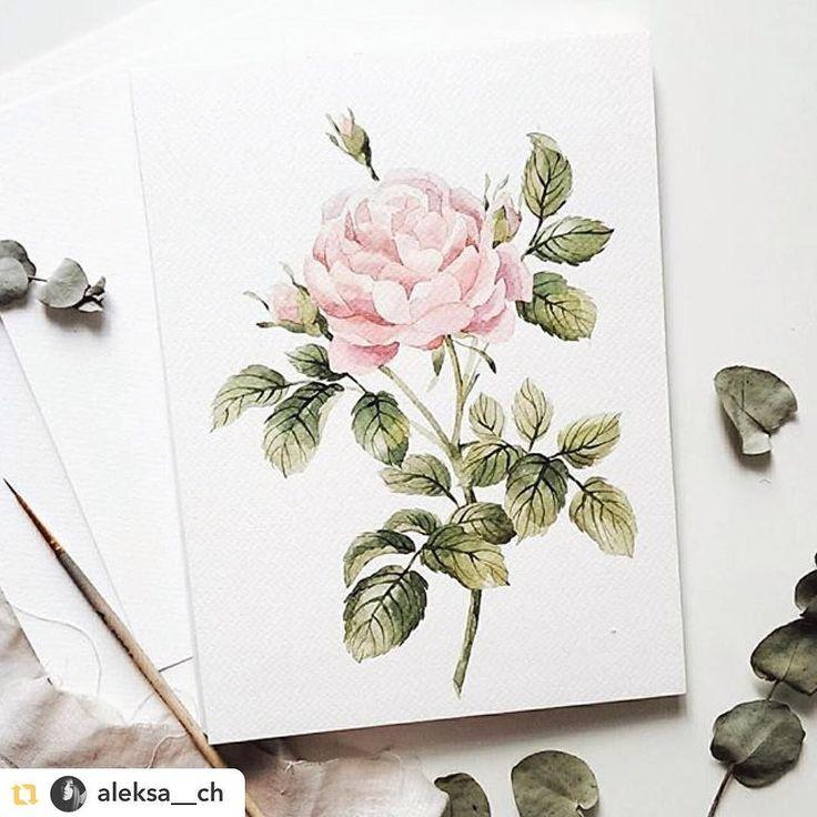Нежная акварель от @aleksa__ch как один из способов забыть про непогоду #hipocoinspiration #art#роза#ботаническийсад#ботаника#розы#розочки#розовый#розовыйцвет#цветы#цветок#цветочки#акварель#рисунок#искусство#дизайн#sketch#иллюстрация#illustration#drawing#art#roses#rose#pink#watercolour#aquarelle#botanical#botanicalgarden#rosa#flower hipoco.com