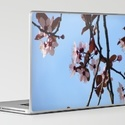 Spring is here, give your laptop a makeover