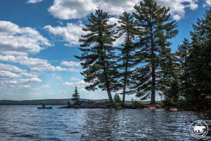 5 Favorite Lakes in Algonquin Provincial Park