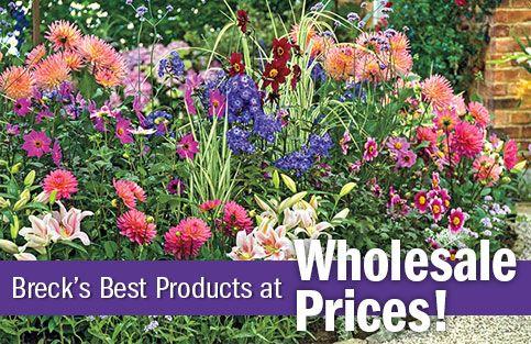 Brecks Wholesale