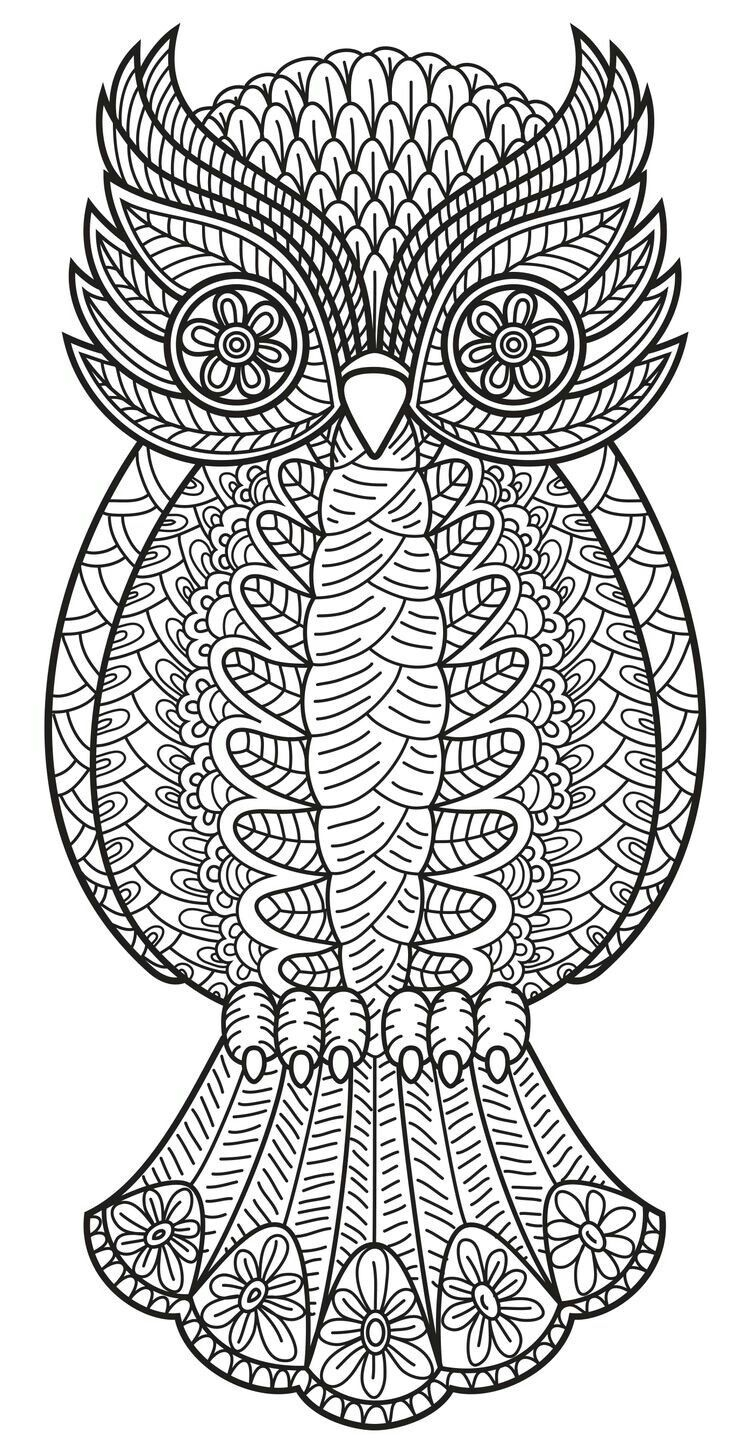 119 best coloring images on pinterest coloring books