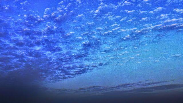 Desde las Islas Canarias  ..Fotografias  : Mirando al cielo.....intenso azul salpicado de nub...