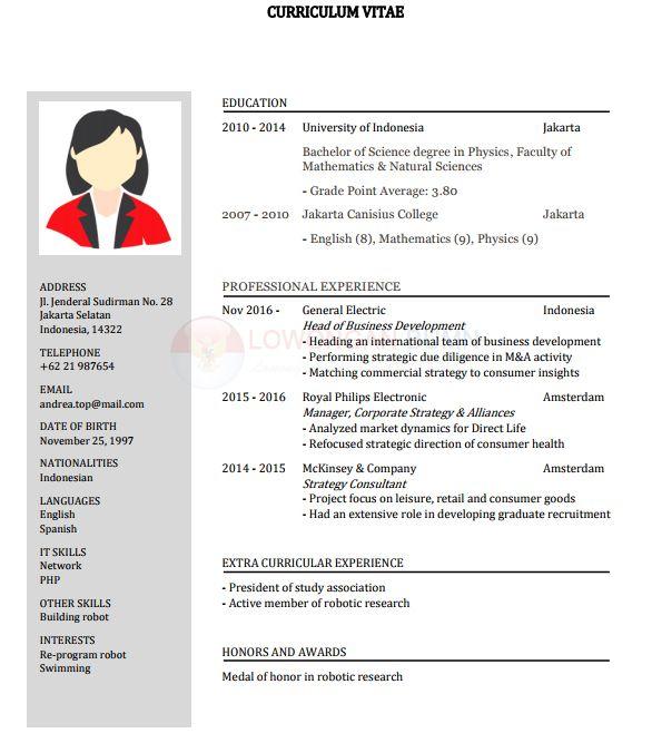 Contoh Cv Daftar Riwayat Hidup Pdf Doc Layout I Riwayat Hidup Creative Cv Template Ilmu Pengetahuan Alam