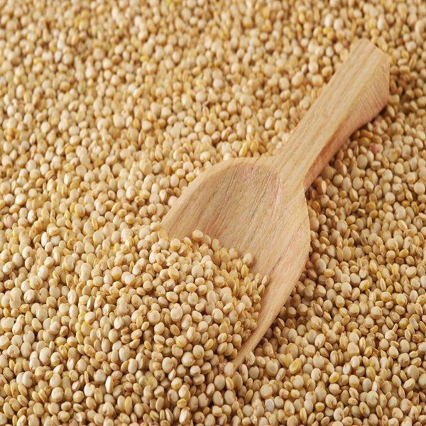 Yum Rush Inc. - White Quinoa WS, $159.50 (http://www.yumrush.com/white-quinoa-wholesale/)