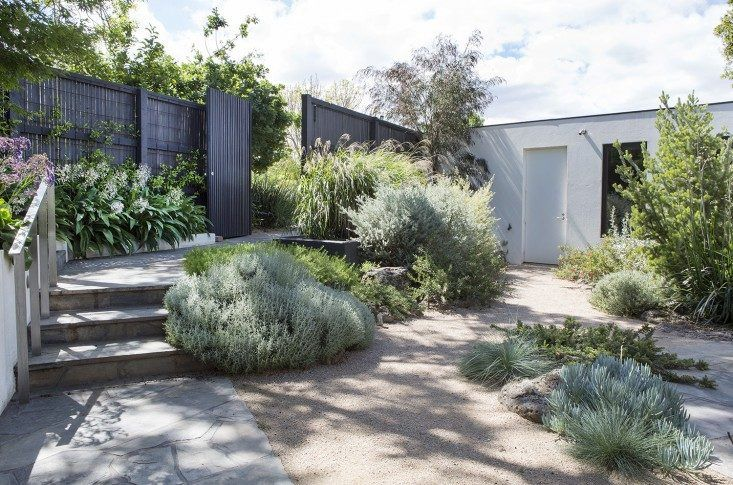 A graywater irrigation system collects water from the washing machine and showers for use in a new garden in the Melbourne suburb Toorak, designed by Grounded Gardens. For more, see Designer Visit: A Courtyard to Covet in a Modern Melbourne Garden. Photograph courtesy of Grounded Gardens