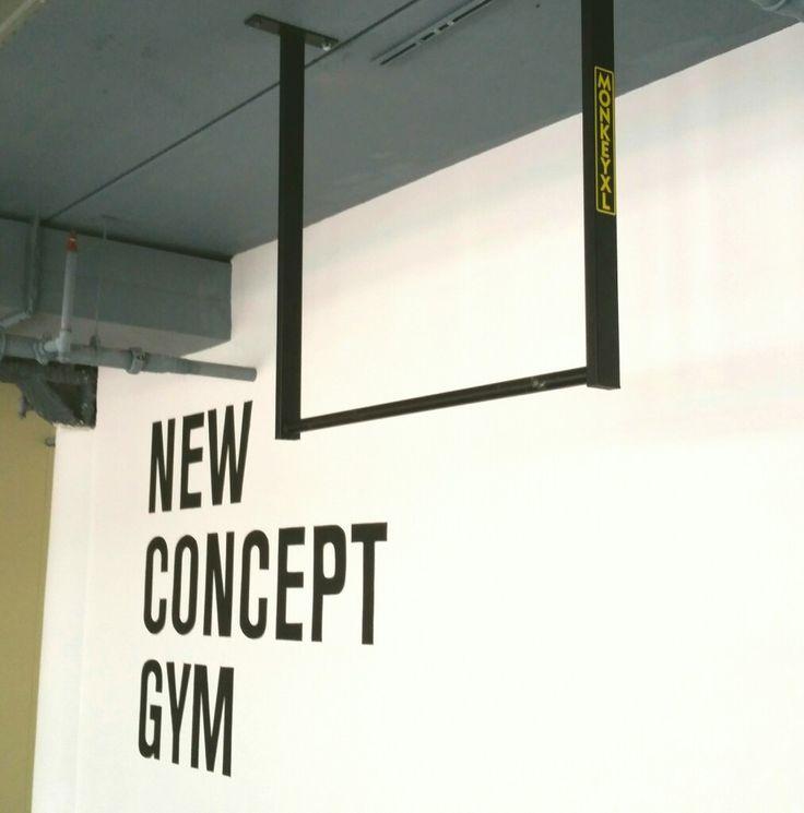 Pull up bar plafond