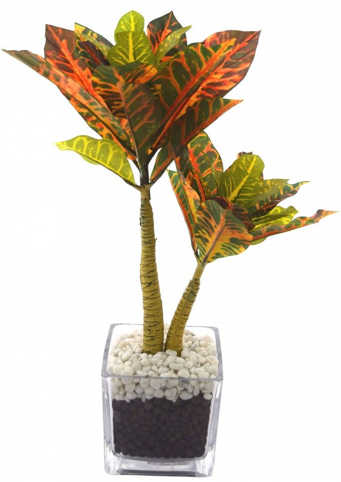 artificial croton plant in a stylish glass pot 38 cm tall