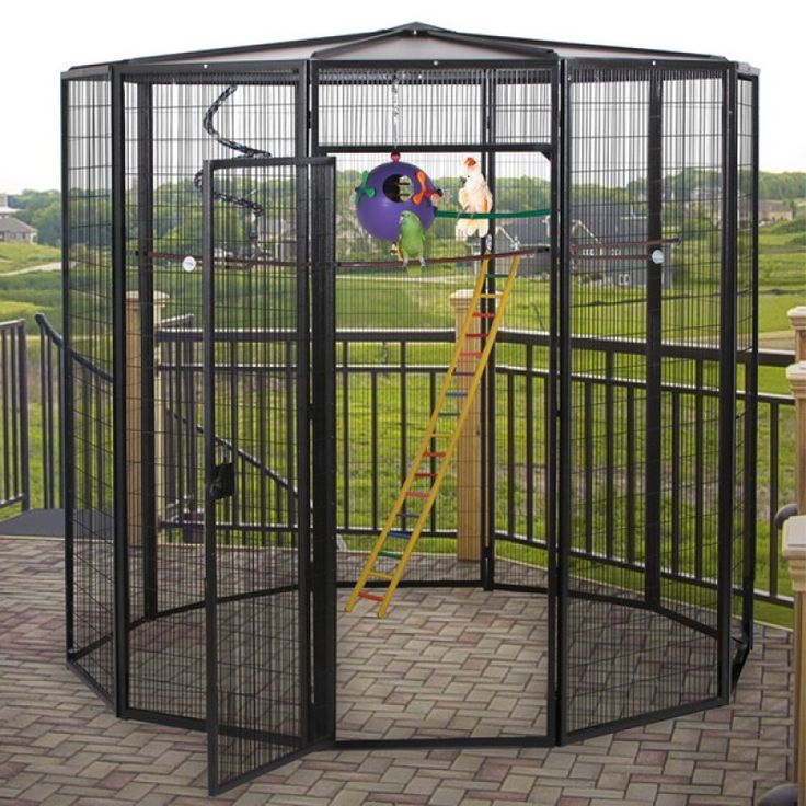 1000 ideas about bird aviary on pinterest diy bird cage coop de codorna and bird aviary. Black Bedroom Furniture Sets. Home Design Ideas