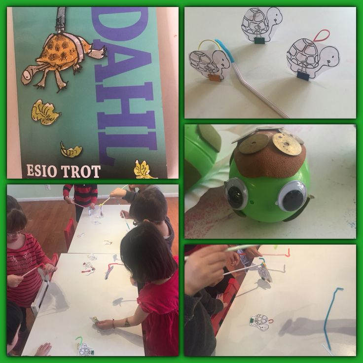 Roald Dahl week: Esio Trot. Make tortoise-catchers and test them out.
