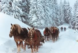 in winter with horses and carriages to ride tourists
