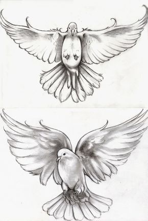 A commission for someone who wanted two different doves for representing her children.
