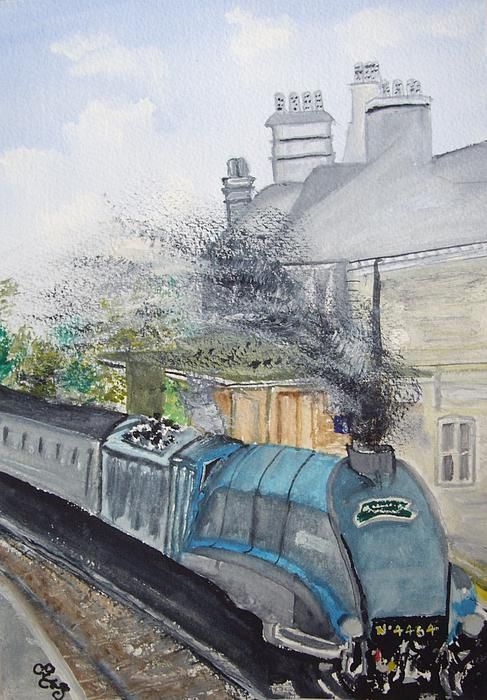Bittern through Chertsey watercolour